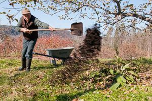 "Spread woodsy compost after harvest to ""seal the deal"" on effective leaf decomposition. -- photo: Stacey Cramp"